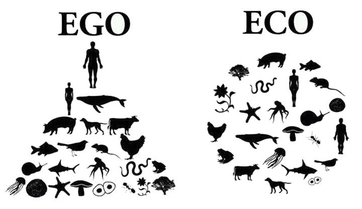 Economics, Socialism, Ecology: A Critical Outline (Part 2